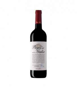 Pagos del Galir Mencia Red Wine 2006