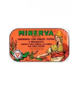 Minerva Whole Sardine in Tomato